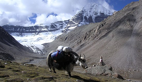 Tibet Trekking around Kailash with Everest and Tsada