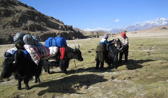 Tibet Trekking from Damxung to Nam Tso Lake